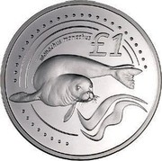 Cyprus Pound Mediterranean Monk Seal 2005 Proof KM# 76a £1 MONACHUS MONACHUS coin reverse