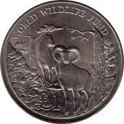Cyprus Pound World Wildlife Fund 1986 KM# 59 1 WORLD WILDLIFE FUND coin reverse
