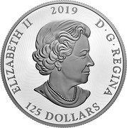 Canada 125 Dollars Primal Predators - The Grizzly 2019 ELIZABETH II 2019 D • G • REGINA 125 DOLLARS coin obverse