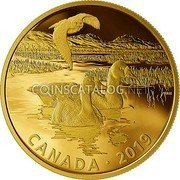 Canada 30 Dollars (Owl and Greater White-Fronted Geese) CANADA • 2019 coin reverse