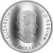 Canada 30 Dollars The Fabric of Canada 2019 ELIZABETH II D • G • REGINA 30 DOLLARS coin obverse