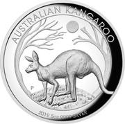 Australia 8 Dollars Australian Kangaroo 2019 AUSTRALIAN KANGAROO P AH 2019 5OZ 9999 SILVER coin reverse