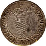 Ireland Shilling Elizabeth I (1601-1602) KM# 9.1 POSVI DEVM ADIVTOREM MEV coin reverse