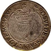 Ireland Shilling Elizabeth I (1601) KM# 9.2 POSVI DEVM ADIVTOREM MEV coin reverse