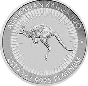 Australia 100 Dollars (Australian Kangaroo) AUSTRALIAN KANGAROO P 2019 1 OZ 9995 PLATINUM coin reverse