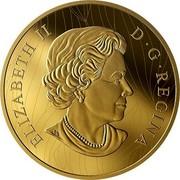 Canada 2,500 Dollars Robert Bateman's Into the Light - Lion 2019 ELIZABETH II 2019 D • G • REGINA coin obverse