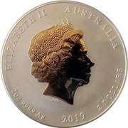 Australia 2 Dollars Year of the Pig (colored) 2019 ELIZABETH II AUSTRALIA 2 OZ 9999 AG 2019 2 DOLLARS coin obverse