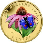 Canada 250 Dollars (Purple Coneflower and Eastern Tailed Blue Butterfly) 250 DOLLARS 2015 CANADA coin reverse