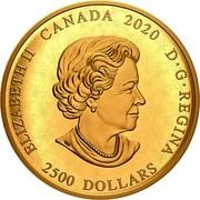 Canada 2500 Dollars Reimagined 1905 Arms of Dominion of Canada 2020 ELIZABETH II CANADA 2020 D • G • REGINA 2500 DOLLARS coin obverse