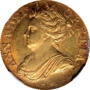 UK 1/2 Guinea KM# 510 The Royal Mint ANNA DEI GRATIA coin obverse