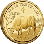 UK 100 Pounds Year of the Ox 2021 Proof, released in 2020 YEAR OF THE OX 2021 牛 HB coin reverse