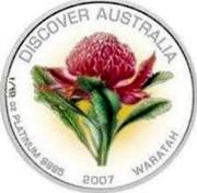 Australia 15 Dollars Waratah 2007 Proof - Colourised KM# 1161 DISCOVER AUSTRALIA 1/10 OZ PLATINUM 9995 2007 WARATAH coin reverse