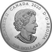 Canada 250 Dollars Arms of Dominion of Canada 2020 ELIZABETH II CANADA 2020 D G REGINA 250 DOLLARS coin obverse
