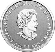 Canada 3 Dollars Blue Flag Iris 2020 ELIZABETH II CANADA 2020 D G REGINA 3 DOLLARS coin obverse