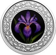 Canada 3 Dollars Blue Flag Iris 2020  coin reverse