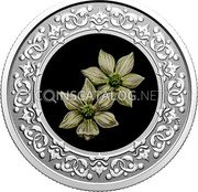 Canada 3 Dollars (British Columbia: Pacific Dogwood)  coin reverse
