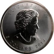 Canada 5 Dollars Maple leaf Four Seasons 2014 BU 2014 5 DOLLARS ELIZABETH II coin obverse