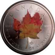 Canada 5 Dollars Maple leaf Four Seasons 2014 BU 9999 9999 CANADA FINE SILVER 1 OZ ARGENT PUR coin reverse