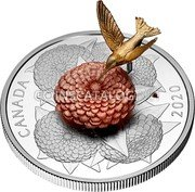 Canada 50 Dollars (The Hummingbird and the Bloom) CANADA 2020 coin reverse