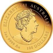 Australia 100 Dollars The Ox. Coloured 2021P UNC - Coloured ELIZABETH II AUSTRALIA JC 1 OZ 9999 AU 100 DOLLARS coin obverse