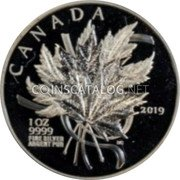 Canada 20 Dollars (The Beloved Maple Leaf) 1OZ 9999 FINE SILVER ARGENT PUR 2019 CANADA coin reverse