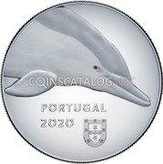 Portugal 5 Euro (The Dolphin) PORTUGAL 2020 coin obverse