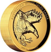 Australia 500 Dollars Australian Wedge-tailed Eagle 2020 P AUSTRALIAN WEDGE-TAILED EAGLE 2020 5OZ 9999 GOLD coin reverse