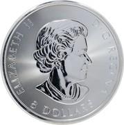 Canada 8 Dollars Snowy Owl 2018 Proof 8 DOLLARS ELIZABETH II D G REGINA coin obverse