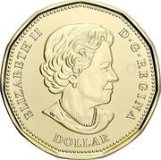 Canada Dollar 75th Anniversary of the UN Charter. Coloured 2020 ELIZABETH II D G REGINA DOLLAR coin obverse
