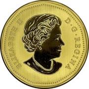 Canada 1 Dollar Blanding's Turtle 2021 ELIZABETH II D G REGINA coin obverse