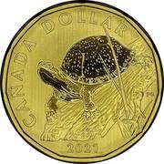 Canada 1 Dollar Blanding's Turtle 2021 CANADA DOLLAR 2021 PG coin reverse