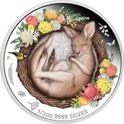 Australia 50 Cents Dreaming Down Under Kangaroo 2021 P 1/2 OZ 9999 SILVER coin reverse