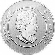 Canada 20 Dollars Bobcat 2014 KM# 1562 ELIZABETH II D∙G∙REGINA coin obverse