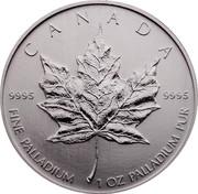 Canada 50 Dollars Maple Leaf 2005 CANADA 9995 9995 FINE PALLADIUM 1 OZ PALLADIUM PUR coin reverse