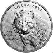 Canada 100 Dollars Wolf Sketch by Robert Bateman 2021 100 DOLLARS CANADA 2021 coin reverse