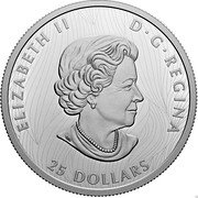 Canada 25 Dollars Bold Bison 2021 ELIZABETH II D G REGINA 25 DOLLARS SB coin obverse