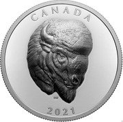 Canada 25 Dollars Bold Bison 2021 CANADA 2021 coin reverse
