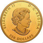 Canada 250 Dollars (Bold Bison) ELIZABETH II D G REGINA 250 DOLLARS coin obverse