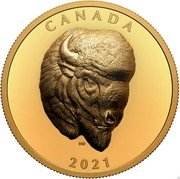 Canada 250 Dollars (Bold Bison) CANADA 2021 DW coin reverse