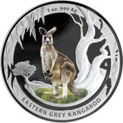Australia 1 Dollar Eastern Grey Kangaroo 2013 KM# 1946 1 OZ .999 AG EASTERN GREY KANGAROO coin reverse