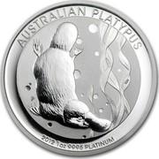 Australia 100 Dollars Australian Platypus 2012 KM# 1731 AUSTRALIAN PLATYPUS 2011 1 OZ 9995 PLATINUM P NM coin reverse