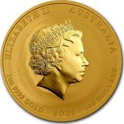 Australia 100 Dollars Year of the Rabbit 2011 KM# 1485 ELIZABETH II AUSTRALIA 1 OZ 9999 GOLD 2011 100 DOLLARS IRB coin obverse