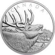 Canada 125 Dollars Elk 2017 Proof CANADA 2017 coin reverse