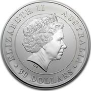 Australia 30 Dollars Australian Koala 2013 KM# 1981 ELIZABETH II AUSTRALIA 30 DOLLARS IRB coin obverse