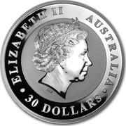 Australia 30 Dollars Australian Kookaburra 2013 KM# 1987 ELIZABETH II AUSTRALIA 30 DOLLARS IRB coin obverse