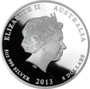 Australia 8 Dollars Year of the Snake 2013 KM# 1994 ELIZABETH II AUSTRALIA 5 OZ 999 SILVER 2013 8 DOLLARS IRB coin obverse