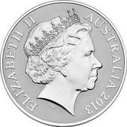 Australia One Dollar Saltwater Crocodile - Bindi 2013 KM# 2013 ELIZABETH II AUSTRALIA 2013 IRB coin obverse