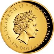 Australia 100 Dollars Australian Koala 2012 P Proof KM# 1845 ELIZABETH II AUSTRALIA 2012 100 DOLLARS IRB coin obverse