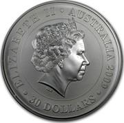 Australia 30 Dollars Sitting Koala 2009 KM# 1112 ELIZABETH II AUSTRALIA 2009 30 DOLLARS IRB coin obverse