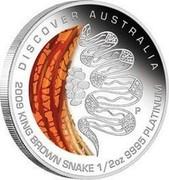 Australia 50 Dollars Discover Australia - King Brown Snake 2009 KM# 1239 DISCOVER AUSTRALIA 2009 KING BROWN SNAKE 1/2 OZ 9995 PLATINUM P DB coin reverse